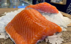 Fresh BC Steelhead Salmon Fillet