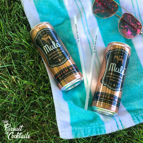 Mule 2.0 Pre-mixed Moscow Mule review