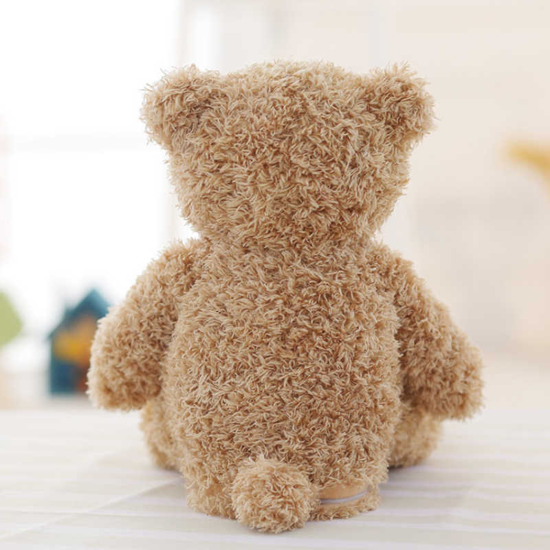 Talking Peek a Boo Teddy Bear - Crzy8.com
