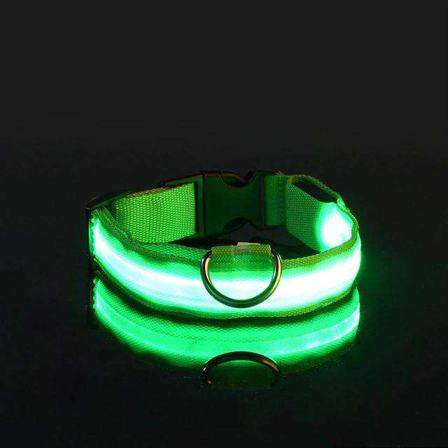 Copie de Lumi'Col™ : Collier LED - Cou d'Pat