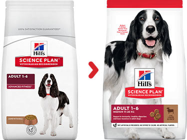 Hill's Science Plan Canine Adult Medium Agneau et au Riz (12 kg) - Oscar and Kitty