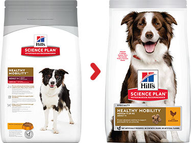 Hill's Science Plan Canine Adult Healthy Mobility Medium au Poulet (12 kg) - Oscar and Kitty