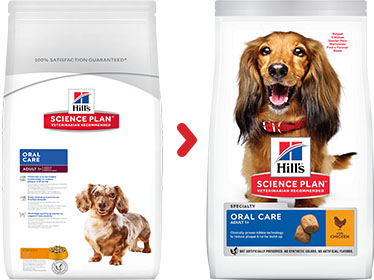 Hill's Science Plan Canine Adult Oral Care Poulet (2 x 2 kg) - Oscar and Kitty