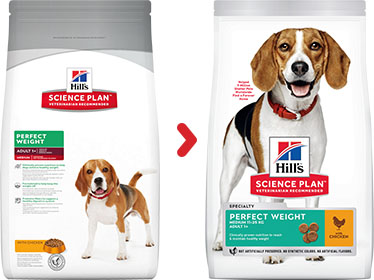 Hill's Science Plan Canine Adult Perfect Weight Medium au Poulet (12 kg) - Oscar and Kitty