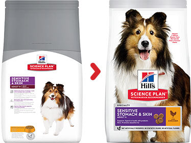 Hill's Science Plan Canine Adult Sensitive Stomach & Skin au Poulet (12 kg) - Oscar and Kitty