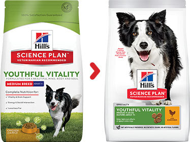 Hill's Science Plan Canine Mature Adult 7+ Youthful Vitality Medium au Poulet et au Riz (2 x 2,5 kg) - Oscar and Kitty