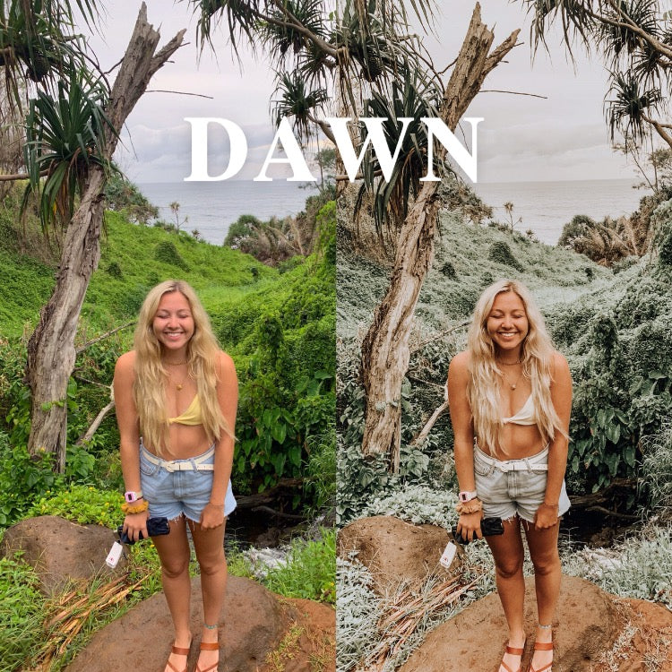 OLIE WEST Traveler Preset: DAWN - Olie West