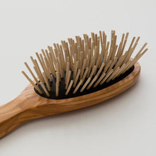 Afbeelding in Gallery-weergave laden, Hairbrush for Dry Scalp