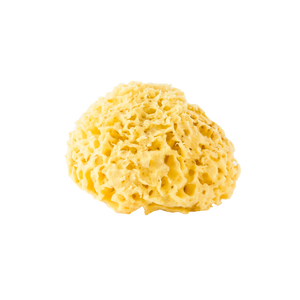 Fine Detox Honeycomb Sea Sponge
