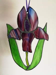 Stained Glass Iris