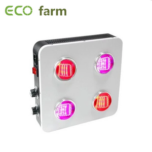 ECO FARM 400/600/800 W CREE COB FULL SPECTRUM LED PFLANZENLAMPE