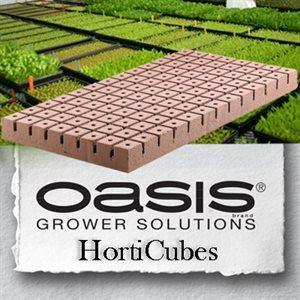 Oasis Horticube 1.25 in Medium Cubes (5240) 104 / Sheet