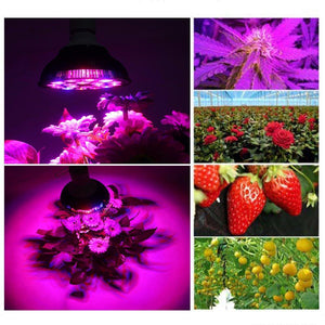Niello 36W LED Pflanzenlampen / Growlampen