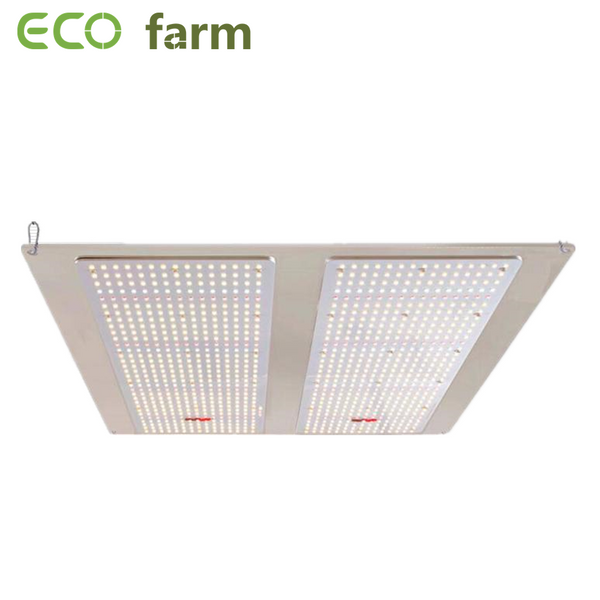 ECO Farm 220W / 430W / 640W Dimmbare Quantum Board LED Grow Light Verkauf schnell