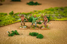Load image into Gallery viewer, Gallic Warband Boxed Set