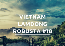 Load image into Gallery viewer, 100% Premium Robusta - Vietnam Lam Dong #18