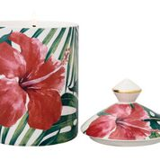 Hibiscus / Apple Blossom: Stoneglow Urban Botanics Collection