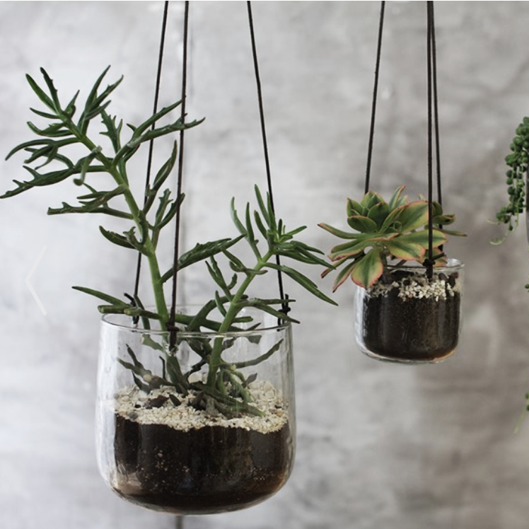 Viri Glass hanging planter