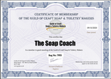 The Soap Coach