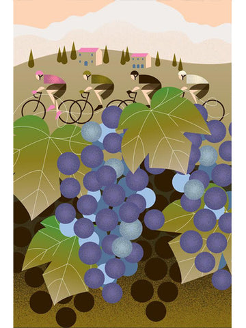 Italia Vineyard - Cycling Poster
