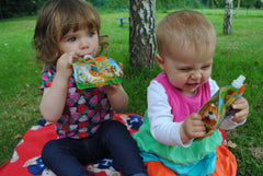 Nom Nom Kids Reusable Food Pouches toddler baby weaning picnic snacks in the park