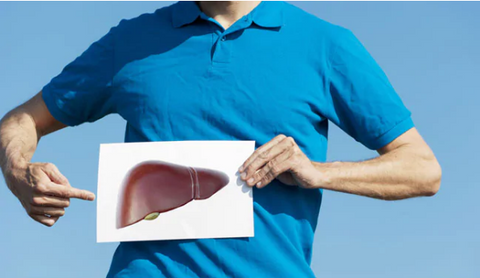 The Liver's Effect on Weightloss
