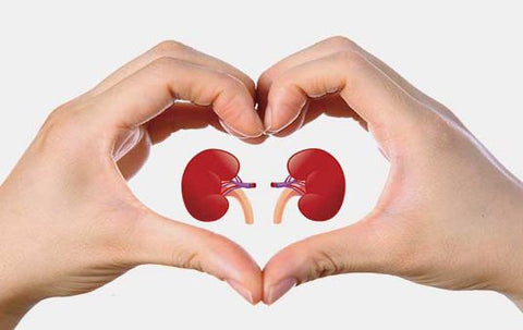strong kidney