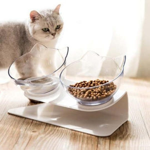 Why You Should Use Elevated Cat Feeders
