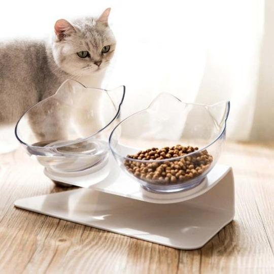 Cat with Tilted Orthopedic Cat Bowl