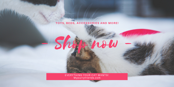 My Purry Friends: Toys, Beds, Accessories and more!