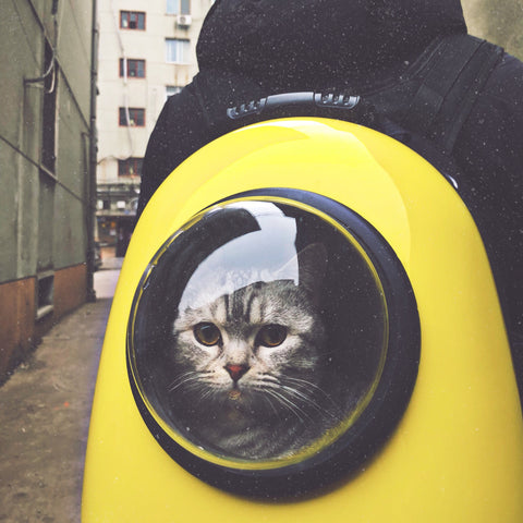 My Purry Friends - Astronaut Cat Backpack