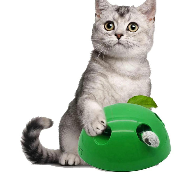 Peek A Boo Cat Toy - Toys - My Purry Friends - Online shop for everything your cat wants.