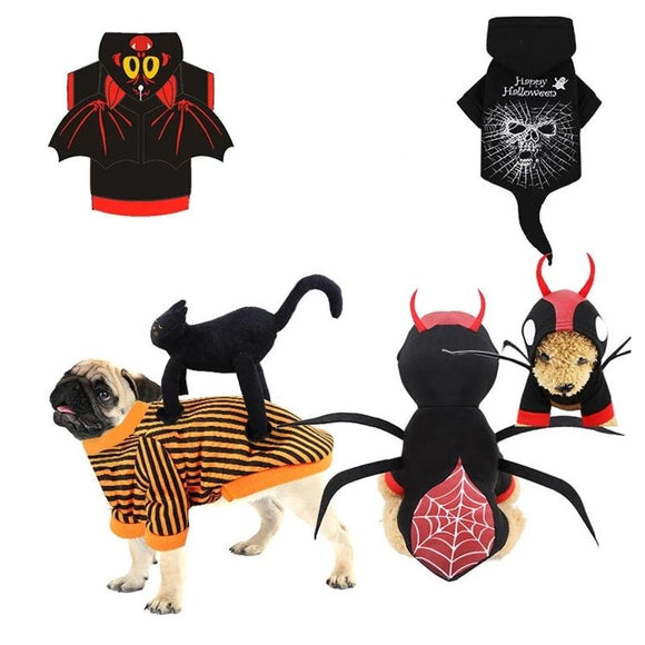 Scary Halloween Cat Costumes - Costumes - My Purry Friends - Online shop for everything your cat wants.