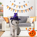Witch Cat Hat - Costumes - My Purry Friends - Online shop for everything your cat wants.