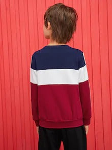 Boys Striped Side Colorblock Slogan Embroidered Sweatshirt