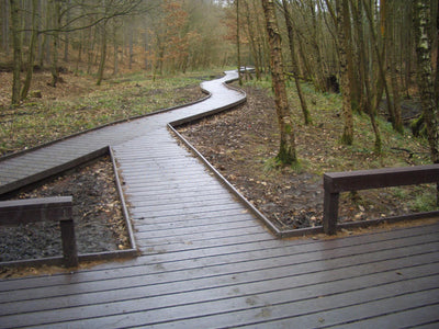 Recycled plastic decking boardwalk
