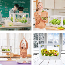 Load image into Gallery viewer, Greenjoy Indoor Herb Garden Starter Kit, Hydroponics Growing System