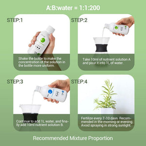 Nutrient Solution A & B for Plants Fruits Vegetable Herbs 200ml with 5 Sheets of 100 Plugs Grow Cubes