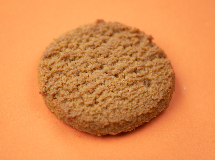Cookie+ Keto Snickerdoodle - Cookie+ Protein