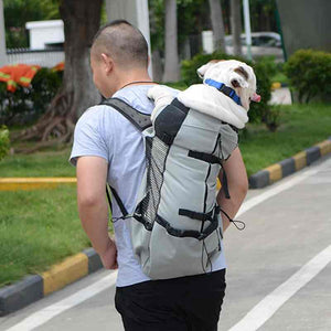 dog backpack for hiking