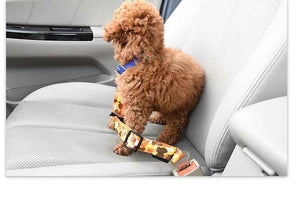 Stylish Dog Seat Belt