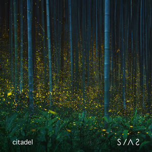 "New Single ""Citadel"" Available Today!"