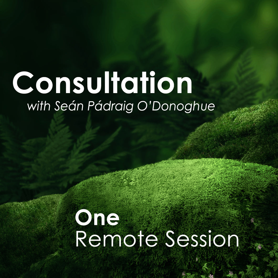 One Session (Remote)