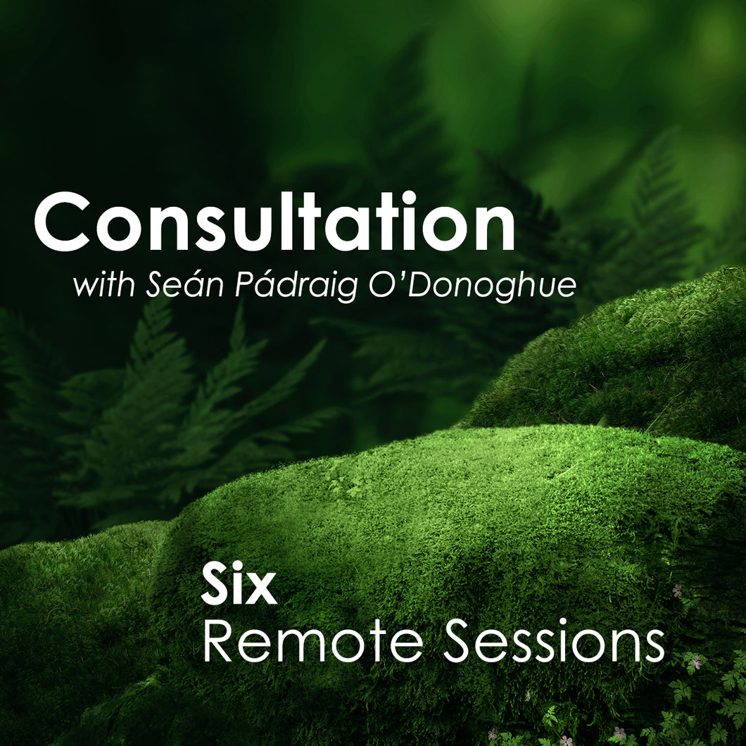 Six Sessions (Remote)