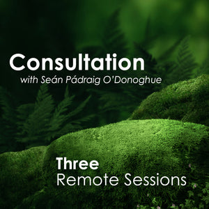 Three Sessions (Remote)