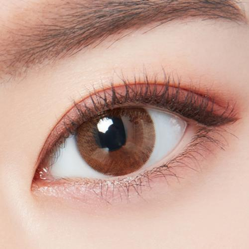 Lighly Modern Brown - eotd