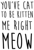 You've cat to be kitten me right meow - 180085