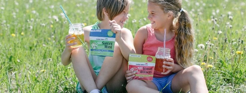 Healthy Habits Sweet Mint Kids Tea - Cedar Lake Teas