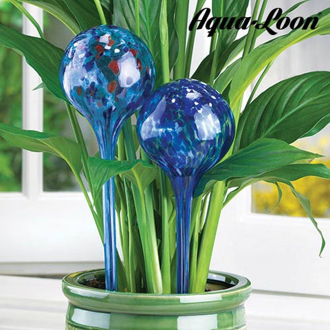Aqua Loon Watering Globe (pack of 2)