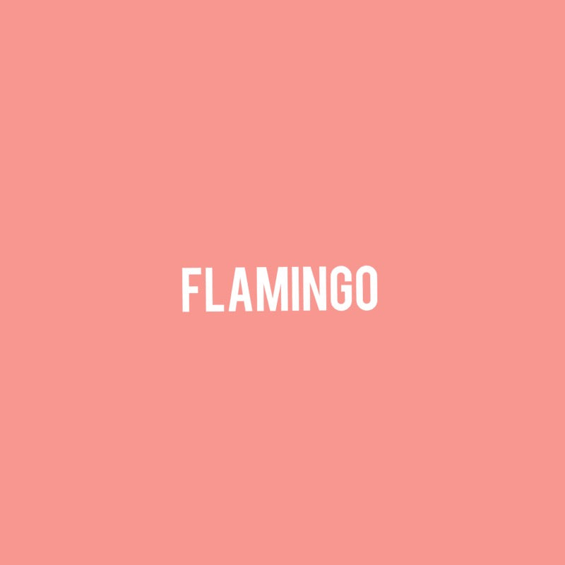 Tie Back Bra Top in Flamingo